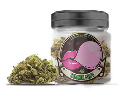 Susze Cannabis Sativa